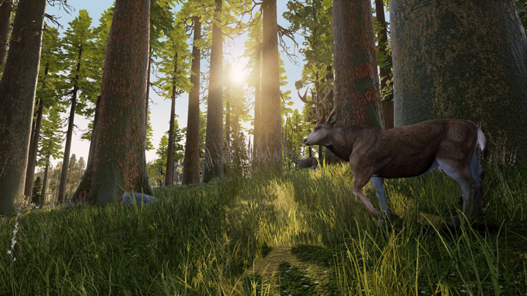 Hunting Simulator – Screenshot#1