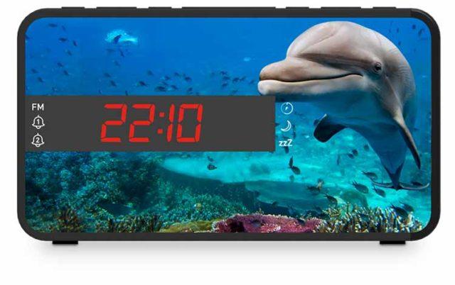Dual alarm clock (animals) - Packshot